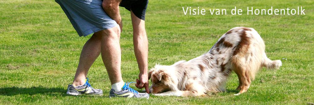 Hondenschool Limburg visie hondentolk