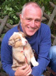 Hondenschool Limburg - Puppycursus door professioneel hondentrainer Godfried Dols de Hondentolk